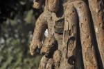 drzewa-110