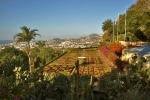 Ogrod botaniczny-28