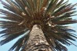 Ogrod botaniczny-22