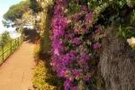 Ogrod botaniczny-21