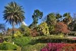 Ogrod botaniczny-18